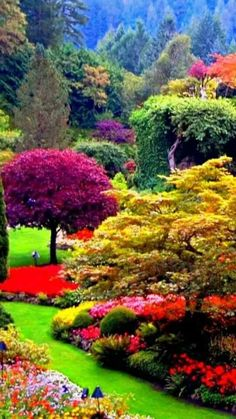 32 Lovely Flower Garden Design Ideas To Beautify Your Outdoor - New ideas Beautiful Nature Pictures, Beautiful Nature Wallpaper, Amazing Nature, Nature Photos, Beautiful Landscapes, Beautiful Scenery, Amazing Pictures, Most Beautiful Gardens, Beautiful Flowers Garden