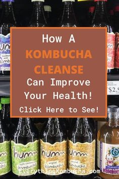 There are so many different health cleanses out there these days. And unfortunately a lot of them do more harm than good. A kombucha cleanse however, is different than most of the other cleanses out there and is a safe and healthy way to quickly improve your digestive and overall health. If you'd like to learn how to use a kombucha cleanse to improve your health, click on the pin to read my article! #kombucha #cleanse #diet Candida Cleanse, Health Cleanse, Cleanse Diet, Kombucha Health Benefits, Kombucha Tea, Cleanses, Home Remedies, Mushrooms, Improve Yourself