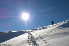 the only way is up! #freshiescrew #hiking #freeski