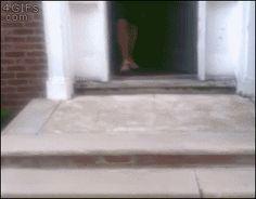 Essa escada parece perigosa, VOU ME JOGAR NO ARBUSTO PORQUE SOU VIDA LOKA ME SEGURA GILSO EU TO BEM LOCO. (Gifs)