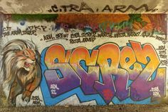 Street art au bord de la Seine à Étiolles - Lion et lettrage en couleur 20160420037