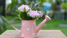 Έξυπνο Τρικ που θα Γεμίσει τη Βεράντα σας με Τριαντάφυλλαspirossoulis.com – the home issue Pono Kai, Watering Can, Hacks, Canning, Decoupage, Gardening, Lawn And Garden, Home Canning, Horticulture