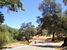 Driving California State Route 245, east of Kings Canyon and Sequoia National Park. Do you have a favorite back road?