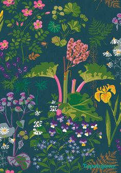Tapeta Boras Tapeter Scandinavian Designers II 1791 Rabarber - Wzory roślinne - Szukaj tapety po wzorze