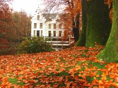 autumn in the east.....