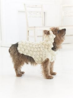 """2015 is the Year Of The Sheep! It's the Year Of The Sheep! Crochet this cute sweater for your dog for Halloween, #NationalDogDay, or just for fun! Pattern calls for 1 - 3 balls of Homespun in """"Deco"""" and size K-10 crochet hook."""