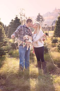 JP Photography couples & dog Christmas Photo, Tacoma wa, tree farm, family, engagement