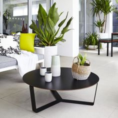 Outdoor inspiration from landscape designer and stylist Adam Robinson