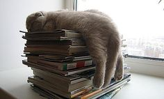 READING JUST WEARS ME OUT