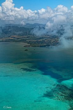 Mauritius - Land of wild dogs, giant fruit bats, and glowing plankton...