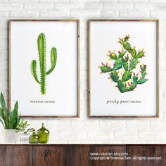 Watercolor Succulent print, Set of 2 Botanical print, Prickly pear cactus, Mexico cactus, Desert art, Succulent painting, Southwest art