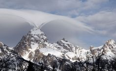 This photo taken Thursday, Feb. 12, 2015, and provided by the Grand Teton National Park shows, an un... - AP Photo/Grand Teton National Park, Jackie Skaggs
