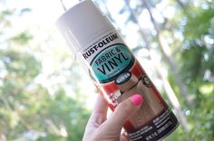 Rustoleum Spray Paint made specifically for fabric and vinyl