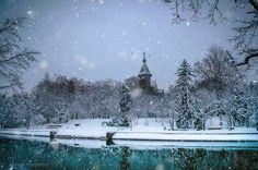 Winter in Timisoara, Romania - photo by Razvan Vitionescu