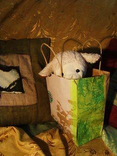oculto en bolsa magica