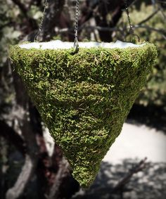 Another great find on #zulily! Moss Cone Hanging Basket by Save On Crafts #zulilyfinds