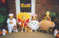Dogs in McDonalds Costumes lol
