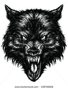 Hand Drawn Wolf Linework Vector