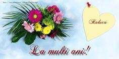 Felicitari de la multi ani - Raluca La multi ani!