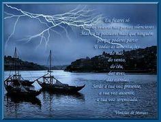 Eu ficarei só, como os veleiros nos portos silenciosos (Vinicius de Moraes)