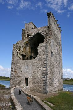Carrigafoyle Castle – County Kerry, Ireland - I like how the dogs are going there to visit! Chateau Medieval, Medieval Castle, Abandoned Castles, Abandoned Places, Abandoned Mansions, Castles In Ireland, Castle Ruins, Republic Of Ireland, Beautiful Castles