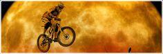 Fahrrad und Fahrradzubehör für Damen-, Herren- & Kinderrad Bicycle Parts, Road Cycling, Women's