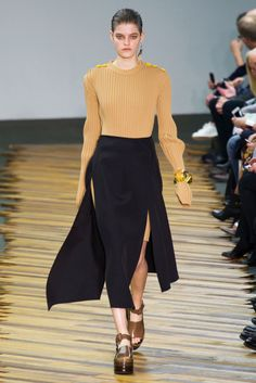 Fall 2014 RTW Celine Collection