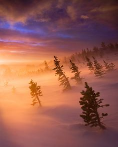 dawn during a winter storm, Rockes, Colorado, by Scott Hotaling