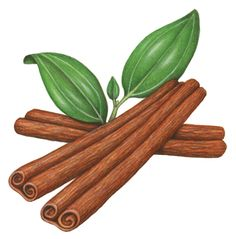Food painting of three cinnamon sticks with leaves.