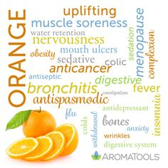 Orange essential oil (Citrus sinensis) is cold expressed from the rinds of the fruit. It is very easy to extract—if you have ever peeled an orange, you have likely ended up with essential oil on yo…