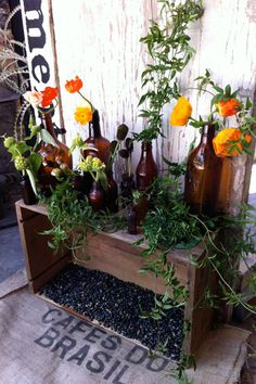 bouquets placed in found containers and featuring a mix of blooms such as tulips, ranunculus, and sea holly thistle. Old Bottles, Reuse Bottles, Brown Bottles, Amber Bottles, Glass Bottles, Sea Holly, Pergola, Deco Floral, Happy Earth