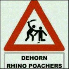 Funny Street Signs, Funny Signs, Rhino Poaching, I Am 4, Funny Names, Rhinoceros, Name Signs, Animal Kingdom, In This World