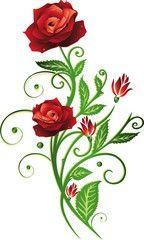Vektor: Blumen, Blüten, Rose, rote Rosen, filigran, floral, flora