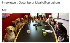 And your preferred office culture:   18 Pictures That Describe You At A Job…