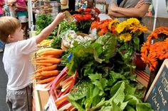 The Westchase Farmer's Market is open every 2nd Saturday in the West Park Village Town Center