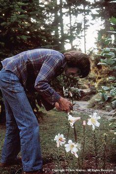 Gardening was one of George Harrison's biggest hobbies.