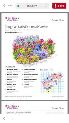 Perennial Garden Plans, Flower Garden Plans, Garden Design Plans, Garden Yard Ideas, Lawn And Garden, Garden Projects, Flower Landscape, Outdoor Flowers, Flower Farm