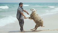 A Palestinian man and companion on a beach in the Gaza Strip, 2010. #animals #cute