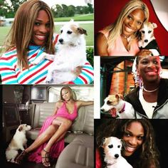 Ekpo Esito Blog: Serena Williams' dog Jackie dies at aged 16, write...