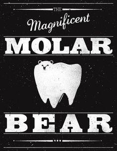 Molar Bear (Gentlemen's Edition) Art Print by Zach Terrell   Society6