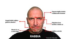 Emozione: Rabbia (ref. Paul Ekman - Emozioni Universali) - Intelligenza Emotiva - Coaching Emozionale.