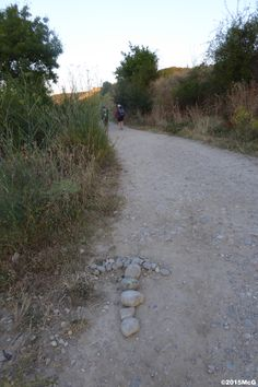 Road to Estella #Camino2015 july McG