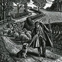 Shepherd's Walk by Howard Phipps