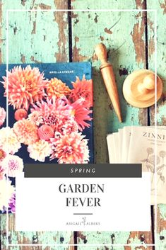 Do you wait all winter dreaming of your spring garden?  I certainly do! I have seed catalog overload and I can not get enough.  Here you will find what I order and my favorite plants for spring! #springplantings #gardenfever #whattoplantinthespring #bestflowersforgardeninginspringtime #whattoplantinthespring