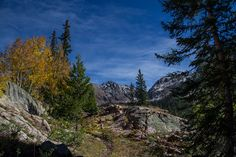 Meanderthals | Bighorn Trail, Eagles Nest Wilderness