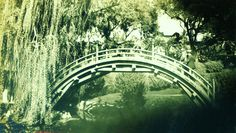 Not Instagram! The moon bridge in the Japanese Garden of the Huntington Library, San Marino, CA, ca. 1933.