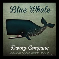 Buy Art For Less 'Blue Whale Diving Company' by Ryan Fowler Framed Vintage Advertisement & Reviews | Wayfair