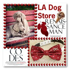 """""""LA Dog Store"""" by ladogstores on Polyvore"""
