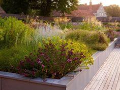 beautiful mix, looks draught tolerant, stone (? Landscape Architecture, Landscape Design, Garden Design, Landscape Grasses, Prairie Garden, Garden Cottage, Porches, Tom Stuart Smith, Garden Levels