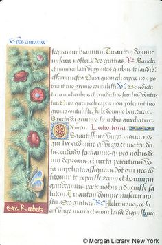Book of Hours, MS M.732 fol. 8v - Images from Medieval and Renaissance Manuscripts - The Morgan Library & Museum